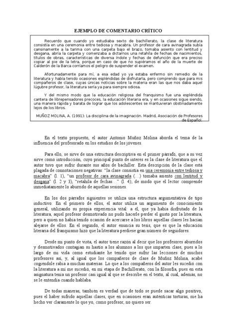 EJEMPLO DE COMENTARIO CRÍTICO