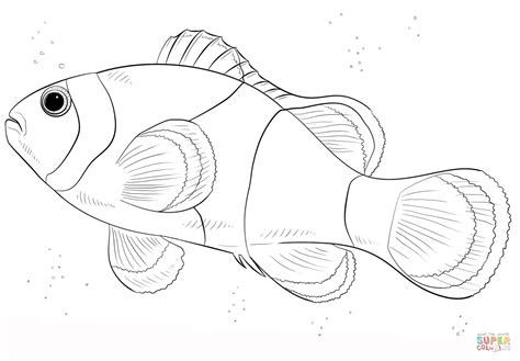 happy fish coloring page asian coloring page 16 happy fish coloring page