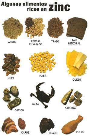 alimentos que contengan mucho calcio nutruci 211 n y crecimiento