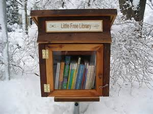tiny library building the first little free library in iceland the afterword