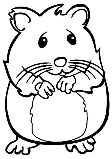 pets coloring pages preschool print coloring image pet theme school and craft