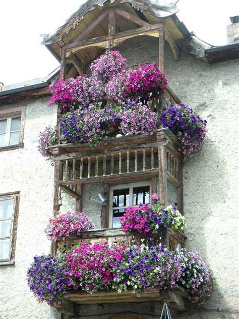 come decorare un balcone con fiori balcone con fiori eg99 pineglen