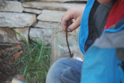 composting dirt roots and wings preschool