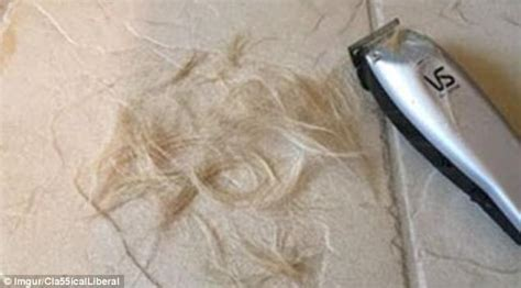 blonde haircut on floor wife freaks when sent pics of son s accidental haircut