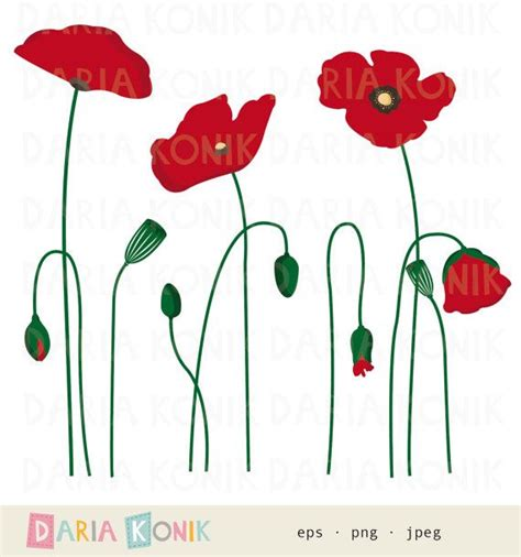 clipart fiore poppies clip set flower clipart botanical floral
