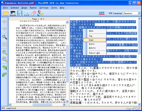 Pdf Swahili To Translation Pdf by How To Translate Pdf File In Japanese To