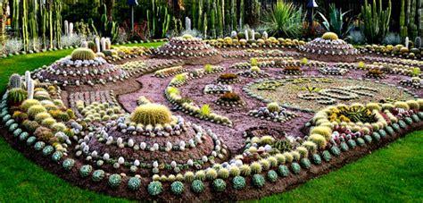 backyard cactus garden the cactus garden in sweden 171 bombay outdoors