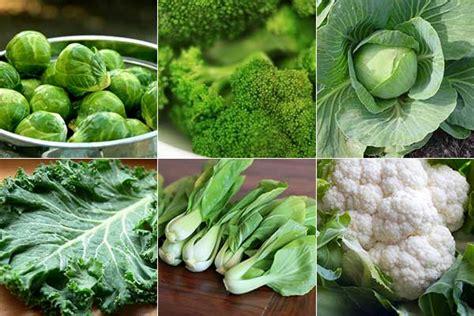 7 vegetables that burn vegetables that reduce belly