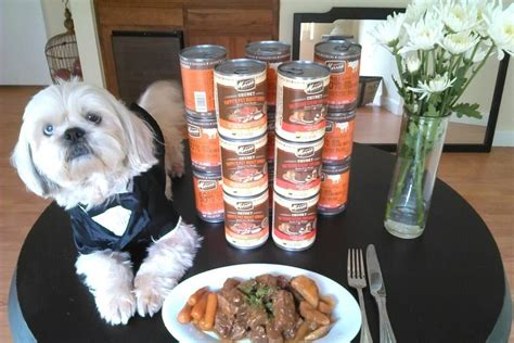 best canned food for puppies how to select best canned food for your pet dogfoodaid