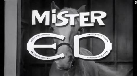 theme song mr ed movie treatment exle image search results