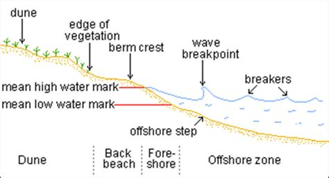 sand dune cross section how deep on average is the sand at the beach quora