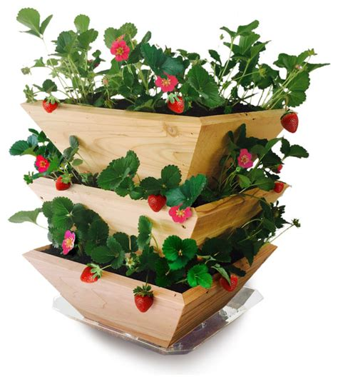 What To Plant In A Strawberry Planter by Cedar Wood Strawberry Patch Tower Planter Farmhouse