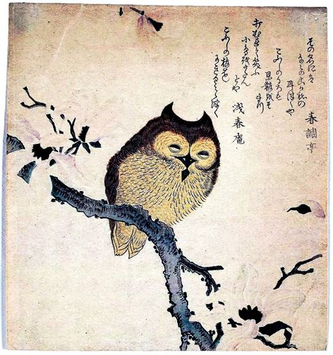 free printable japanese art art asian animal bird owl japanese woodcut