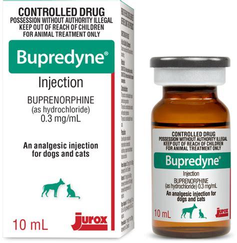 buprenex for dogs bupredyne 174 jurox en au