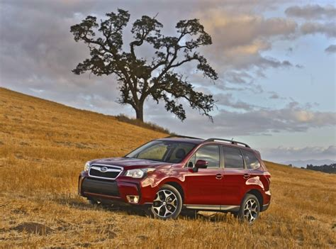 subaru forrester cost how much does a subaru forester cost in the usa
