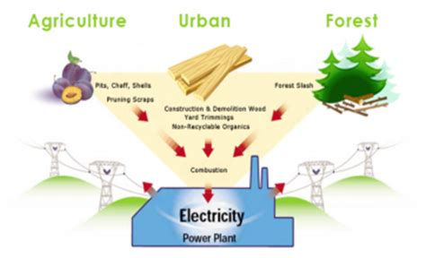 Chp 362 by Omi Renewable Energy Biomass Energy