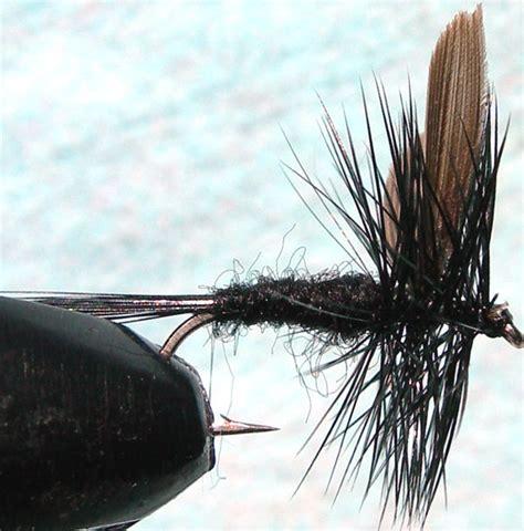 black gnat pattern black gnat trout fly pattern