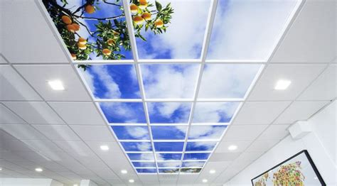 design healing environment kobus personeel barendrecht lumick standard www lumick