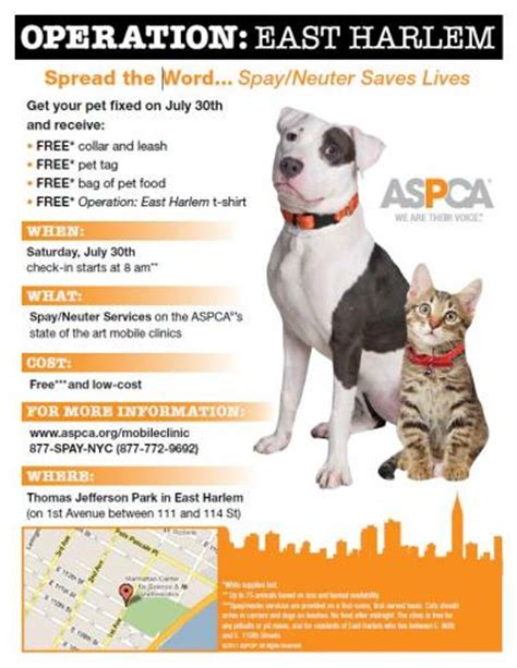 do dogs get spayed or neutered aspca to hold free spay neuter clinic and grooming workshop harlem new york