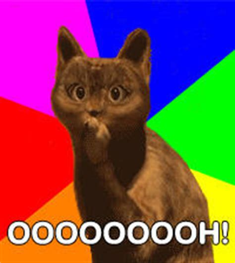 Ooh Face Meme - ooh cat image gallery know your meme