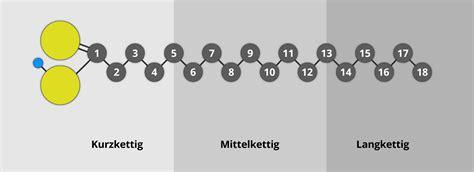 die grundlagen der fette - Vorhänge Unterschiedlich Lang