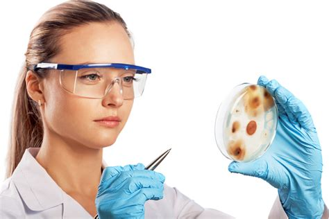 lab test vermiculite test diligence inspection