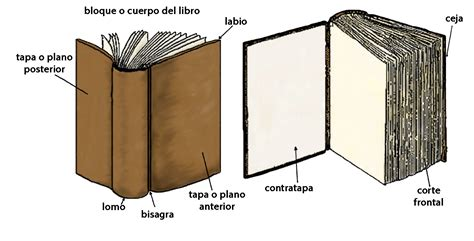 partes del libro tapa contratapa codicolog 237 a