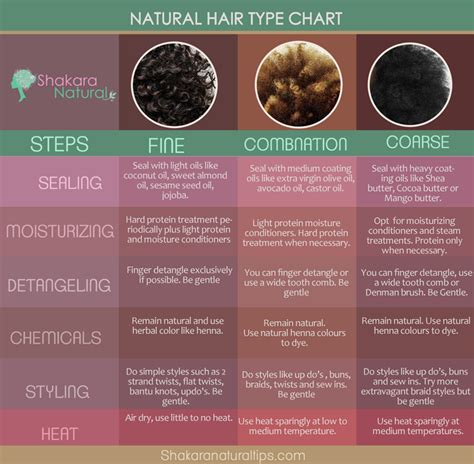 Hair Types Chart For Black by Hairstyles For 4b 4c Hair