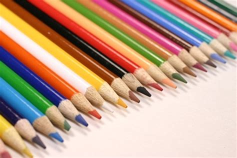 colored for colored pencil supplies wildlife and tutorials