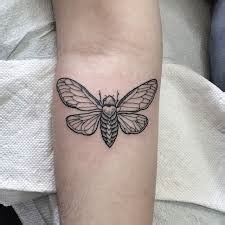 cicada tattoo meaning cicada meaning ideas designs cicada tattoos