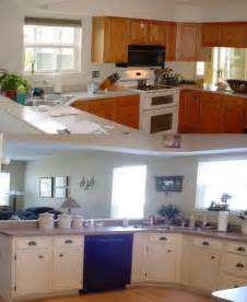Kitchen Cabinets Before And After House Designs School Pictures Of Painted Kitchen Cabinets