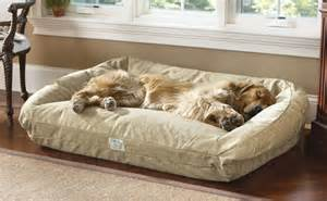 medium dog bed orvis deep dish toughchew dog bed medium dogs 40 60 lbs