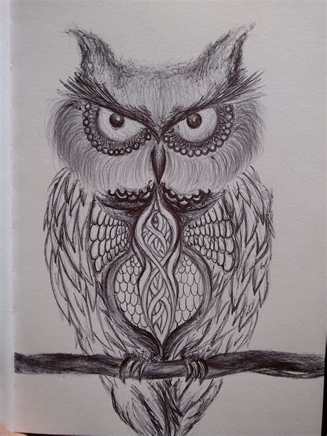 doodle owl owl doodle by whatthemell on deviantart