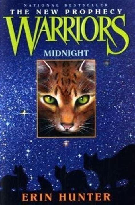 i see a new prophetic generation books midnight warriors the new prophecy 1 by erin