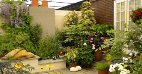 desain kemasan tanaman hias 7 tanaman hias untuk taman rumah minimalis