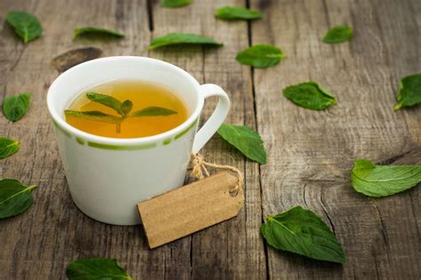 Teh Aroma Melati 1 Isi 24 Cups best 25 pepermint uses ideas on pepermint essential pepermint and bath