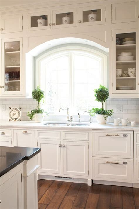 kitchen sink window sill topiary design ideas