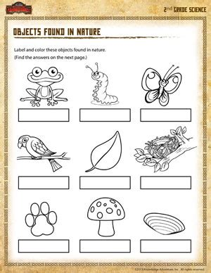 Second Grade Science Worksheets by Objects Found In Nature 2nd Grade Science Worksheet