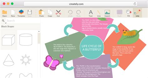 graphic organizers maker educational graphic organizer software for k12 creately