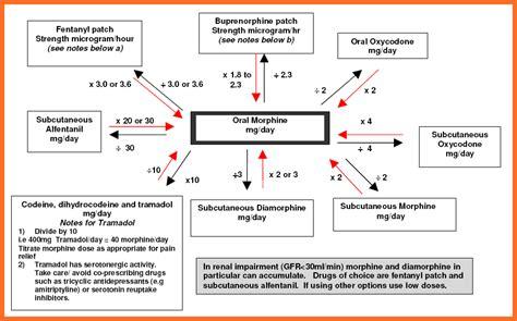 opioid conversion chart opiod conversion chart opiod conversion chart grey pages