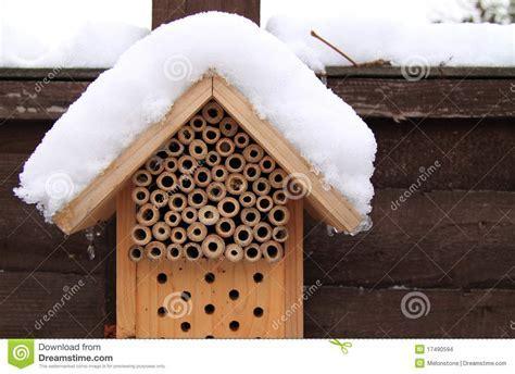 Winter Hibernation Insect Box Stock Images   Image: 17490594