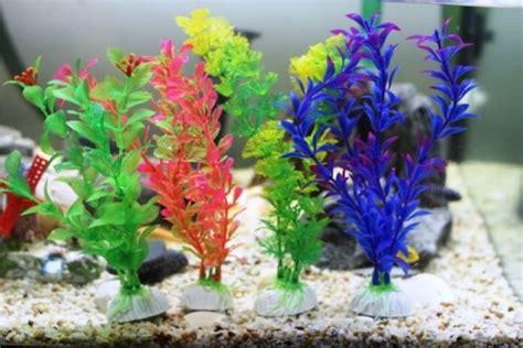 Hiasan Akuarium Tanaman Akuarium Plastik 5 alasan mengapa tanaman plastik lebih baik dari tanaman asli