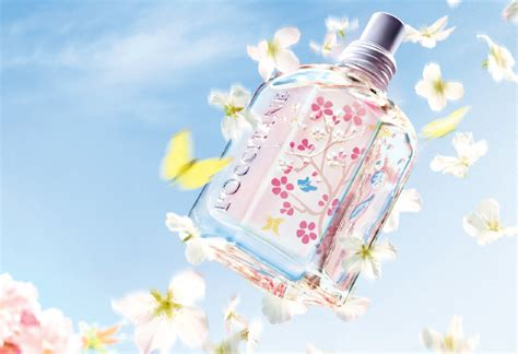 Loccitane Cherry Blossom 30ml Wangi Soft new products from elemis and l occitane for 2013