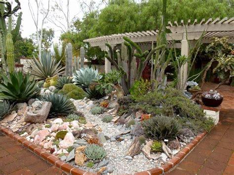 piante grasse in giardino giardino piante grasse piante grasse piante grasse in