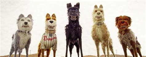 isle of dogs shoo the rushmore academy the world of wes