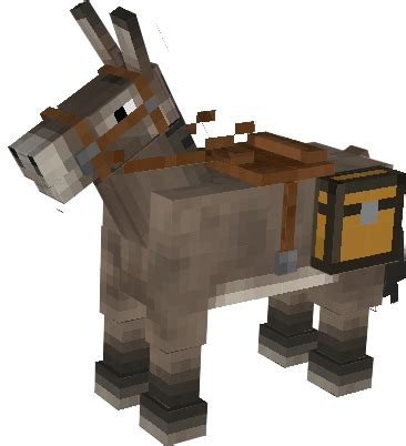 minecraft boat horse donkey minecraft wiki fandom powered by wikia
