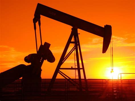 petroleum hängele cabinet approves setting up of indian institute of