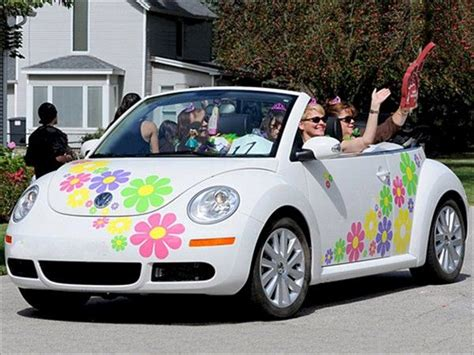 Auto Sticker Pusteblume by Multiple Colors Of Daisy Decals Great Attention Getter
