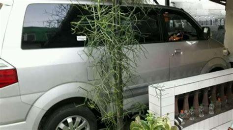 Plat Kopling Mobil Suzuki Apv suzuki apv arena gx 2014 plat depok mulus jarang pakai milik pribadi mobilbekas