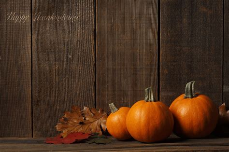 pumpkins wallpaper free pumpkin wallpaper backgrounds wallpaper cave